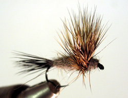 Compower Dun w/hackle
